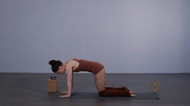 Maria Fürst instruerer en Yoga klasse med mange vridninger.